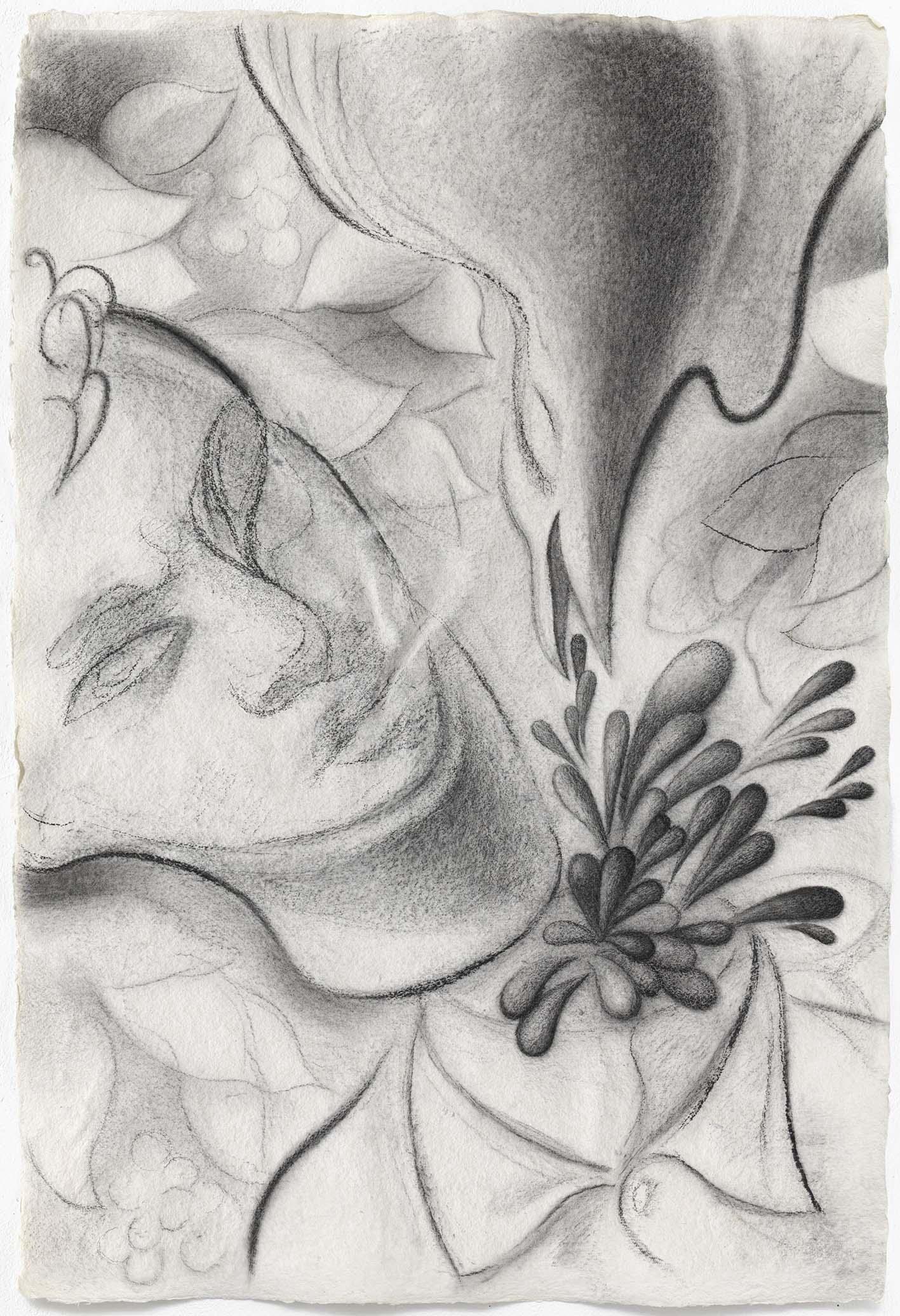 Dennis Scholl Bark Berlin Charcoal Drawing